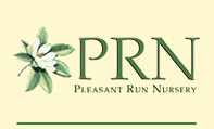 prn-logo